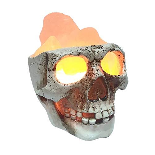 Skull Himalayan Salt Lamp