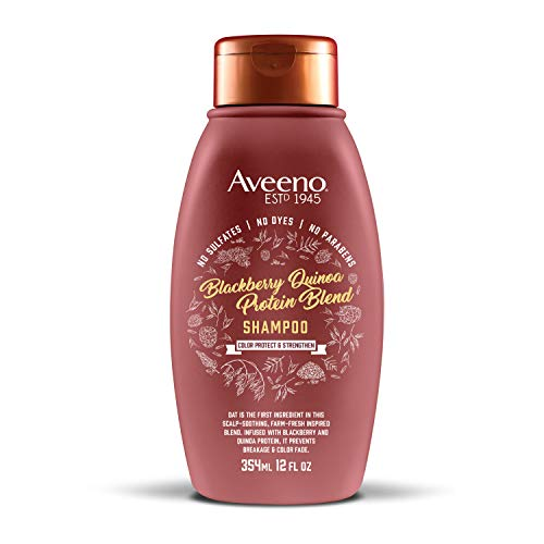 Aveeno Blackberry Quinoa Protein Blend Sulfate-Free Shampoo for Color-Treated Hair Protection, Daily Strengthening & Moisturizing Shampoo, Paraben & Dye-Free, 12 Fl Oz