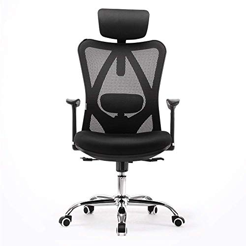 DWLXSH Ergonomic Office Chair Computer Swivel Chair with Adjustable Armrests Two-Way Fine-Tuning Lumbar Pillow Best Protect Lumbar