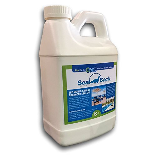 Encore Coating Sealback Wood and Concrete Sealer | Acrylic Low VOC Floor Sealer For Natural Wood, Concrete, and Outdoor Surfaces (1/2 Gallon)