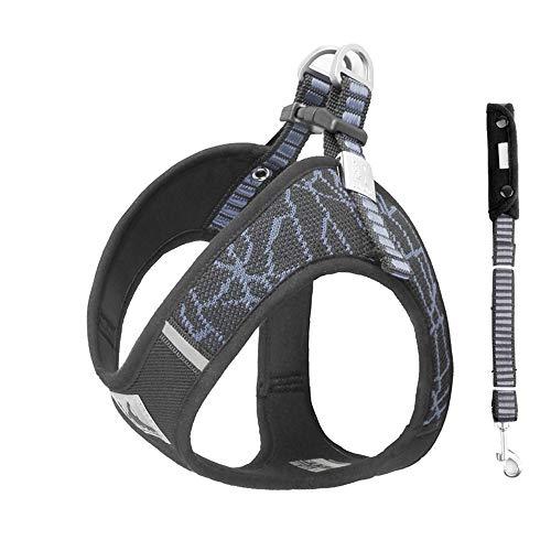 BlingRoKi No Pull Dog Harness Leash Set Adjustable Puppy Walking Halter Harnesses for Terrier,French Bulldog,Westie,Lab(Grey/Set,L)