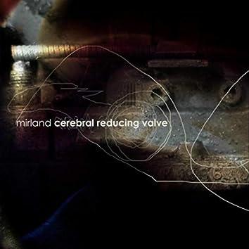Cerebral Reducing Valve