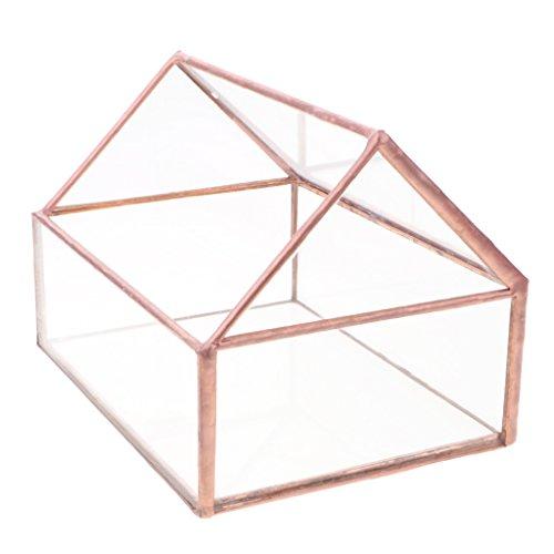 Fioriere Terrario Portagioielli Succulente Contenitore del Piante Vaso in Vetro Mini Esagonale Soprammobili Casa Home-Made Planter - 5