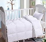 Lightweight Summer Baby/Toddler Natural White Goose Down Blanket Comforter Duvet Insert for Crib Bedding Down Proof Cotton Shell (White, L)