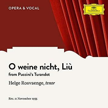 Puccini: Turandot: O weine nicht, Liù (Sung in German)