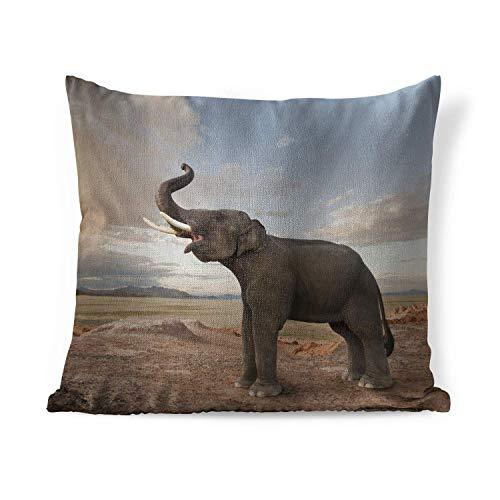 Zierkissen für innen - Elephant - Trompeten Elefanten in der Wüste - 50x50 cm - Kissen mit Fotodruck - Quadratisch - Innenkissen des
