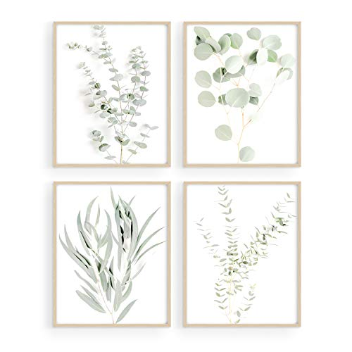 Botanical Plant Wall Art Prints - Set of 4 Plant Wall Decor Pictures Minimalist Wall Art Photo Prints Kitchen Leaves Wall Art Boho Leaf Eucalyptus Green Botanical Poster Set (8'x10', UNFRAMED)