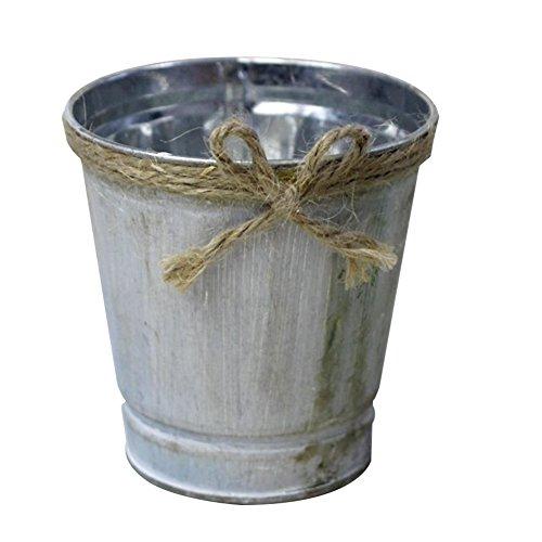 LAAT Vasi in Metallo Vaso da Fiori Vaso per Fiori in Metallo Vaso in Metallo Bottiglie per Piante Fiori Decorazione di Giardino Casa Matrimonio Decorazione Casa Decorazioni da tavolino