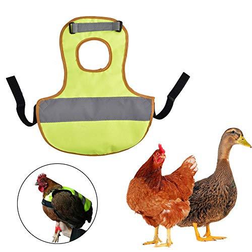 luckything Warnweste Für Hühner, Hühner Warnwesten Pet Warnweste Huhn Kleidung Geflügel Henne Sattel Schürze Federschutz Halter Für Huhn Und Ente