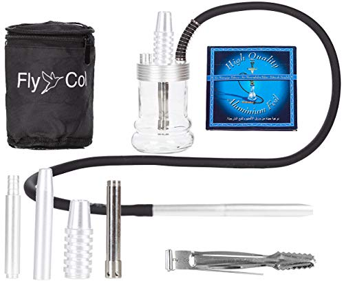 FlyCol Nano 1 Mini Shisha | Travelshisha Wasserpfeife mit Zubehör | Glas Travel Hookah für unterwegs kleine Minishisha Schlauch Set Zange Mundstück (Silber)