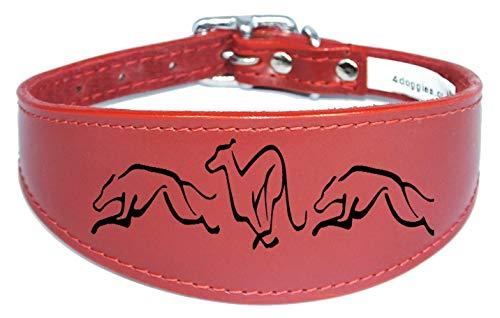 4doggies Collar para perro de cuero de galgo, cuello de látigo acolchado con respaldo grabado (25 cm-30 cm), color rojo