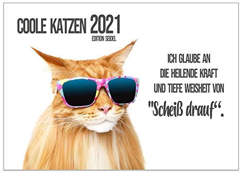 Edition Seidel Coole Katzen mit Sprüchen Premium Kalender 2021 DIN A3 Wandkalender Katzenkalender
