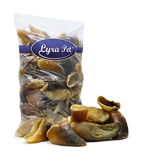 Lyra Pet® 100 Stück XXL Rinderhufe ca. 9 kg Kalbshufe Rind Hufe Kauartikel Snack