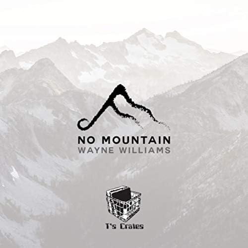 Wayne Williams