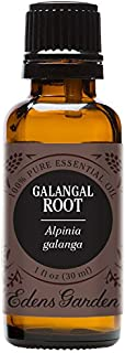 Edens Garden Galangal Root Essential Oil, 100% Pure Therapeutic Grade (Highest Quality Aromatherapy Oils- Cold Flu & Sleep), 30 ml