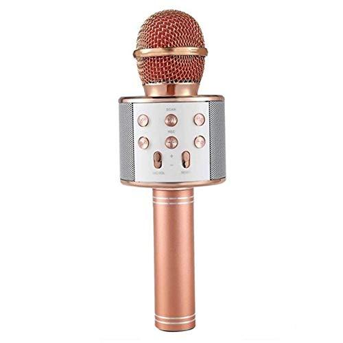 N / A Profesional WS-858 de Mano KTV Micrófono Portátil Inalámbrico Karaoke Home Mic Altavoz Reproductor Micrófonos