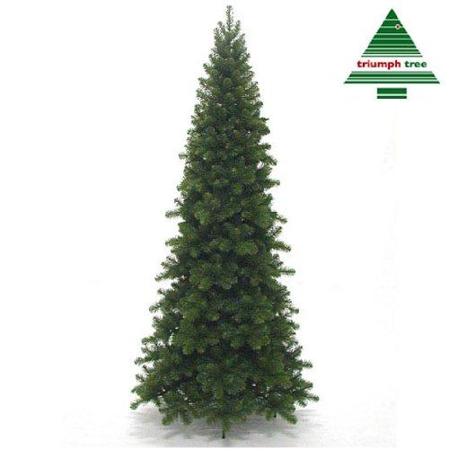 Triumph Tree - Pencil Pine x-mas Tree Green Tips 964 - h215xd99cm