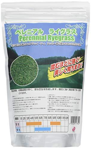 福花園種苗 西洋芝種子 ペレニアルライグラス 1L詰 211734
