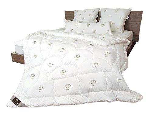 sei Design Mikrofaser Luxus Bettdecke Kollektion SWAN in Premium Qualität mit daunenähnlicher Füllstruktur. Sehr leichte Decke mit extrem hoher Wärmehaltung (winterwarm, 155 x 220 cm)