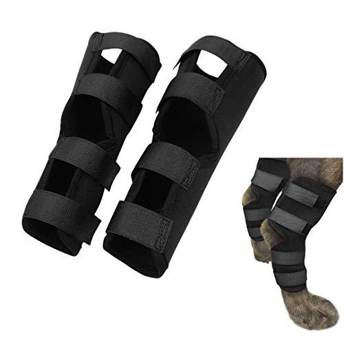 FayTun 1 Paire d'attelles de Jarret pour Chien, genouillères pour Chien Bandage de Protection de la Jambe pour Chien pour guérir et prévenir Les blessures et Les entorses Aide à l'arthrite