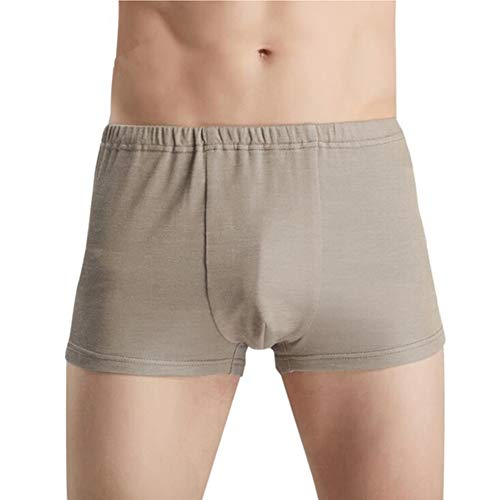 ZMMHW Herren Unterhose, 100% Silberfaser Schutz vor elektromagnetischer Strahlung,XXXL