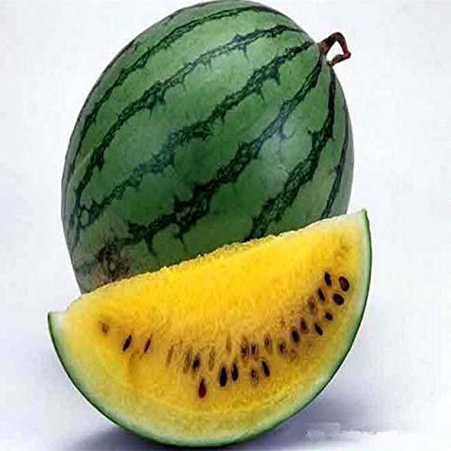 SANHOC Happy Farm 20 pcs/Sac Graines pastèque Fruit délicieux Melon d'eau Graines Bonsai Plantes Semences: Jaune