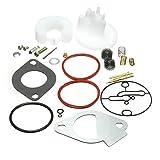 Alamor Kit de reconstrucción de reacondicionamiento del carburador maestro para los carburadores Briggs & Stratton Nikki