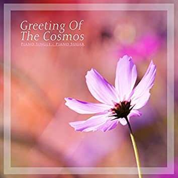 Greetings from Cosmos