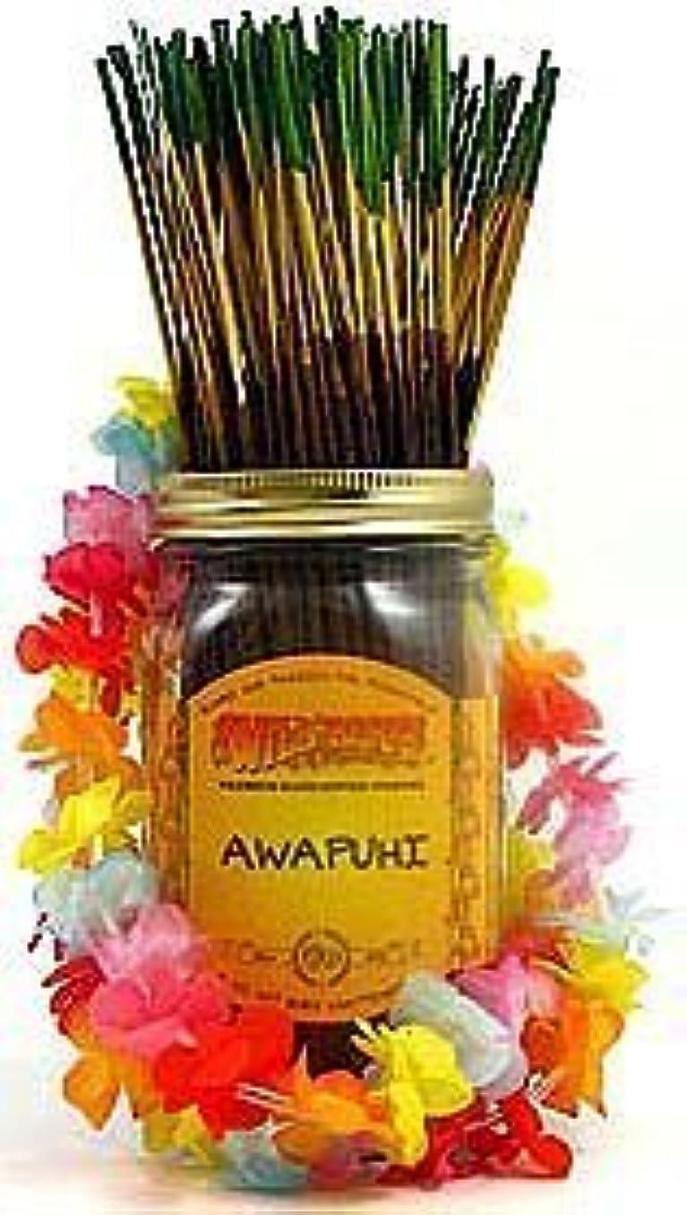 こどもの日消費する療法Awapuhi - 100 Wildberry Incense Sticks [並行輸入品]