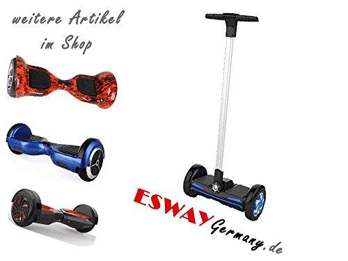 Esway Germany X2 F1 camper*