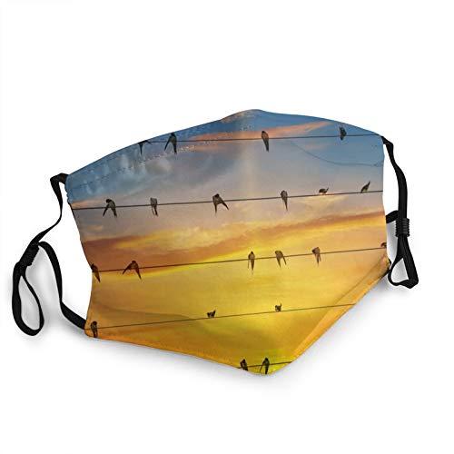 Comfortable Face Mask Sky Sun Glow Wires Birds Swallows Swallows Sun-Proof Fashion Bandana Headwear for Fishing