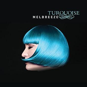 Turquoise (feat. Scott Kinsey, Jimmy Haslip, Gary Novak, Arto Tuncboyaciyan)