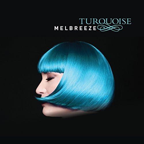 Melbreeze feat. Scott Kinsey, Jimmy Haslip, Gary Novak & Arto Tuncboyaciyan