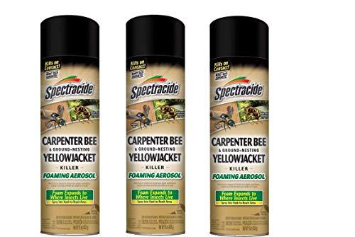 Spectracide Carpenter Bee & Ground-Nesting Yellowjacket Killer Foaming Aerosol (HG-53371) (Pack of 3)