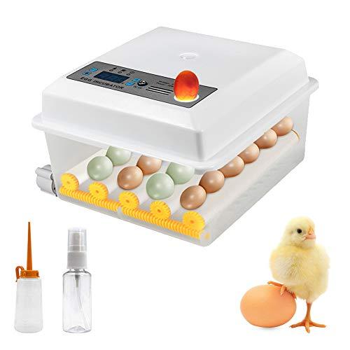 Incubadora digital totalmente automática para 16 huevos, incubadora de huevos inteligente con regulación de temperatura para pollos, patos, gansos, pájaros, palomas, codornices
