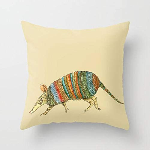 'N/A' Armadillow - Cojín de almohada de tonos desiertos de terraza, cotta, turquesa, oliva, decoración moderna del suroeste