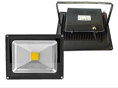 Trendmart® Led Flood Light 50w Warm White Input Voltage Dc or Ac 12v Waterproof Ip 65 Outdoor Security Wash Flood Light / Landscape Lamp / Spotlight .( Black Case )