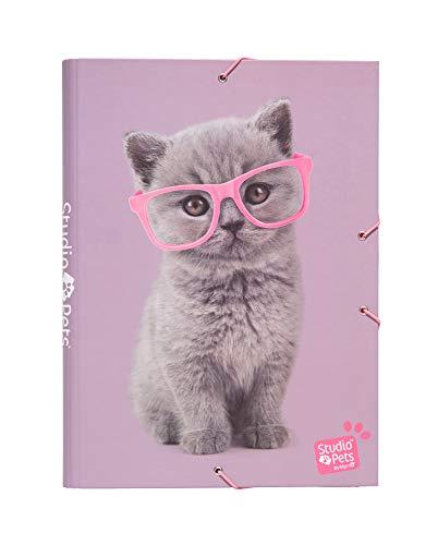 Erik® - Cartellina rigida con elastico Studio Pets Cats, cartone, 24x34 cm, ideale come cartellina portadocumenti A4