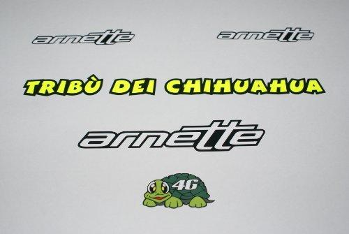 Rapro Graphics Valentino Rossi Arnette helm en vizier stickers