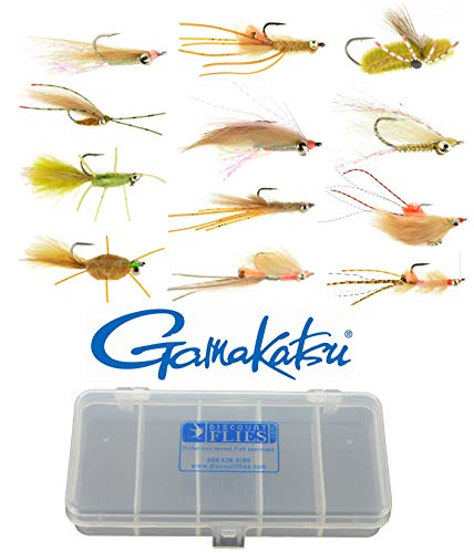 10 best fly kit for saltwater for 2020