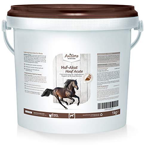 AniForte Huf-Akut Naturprodukt für Pferde 1kg - natürliches Mineralfutter - reich an Vitaminen, Kräutern und Vitalstoffen, zur Unterstützung der vitalen Funktion der Hufe und des Bewegungsapparates Ihres Pferdes