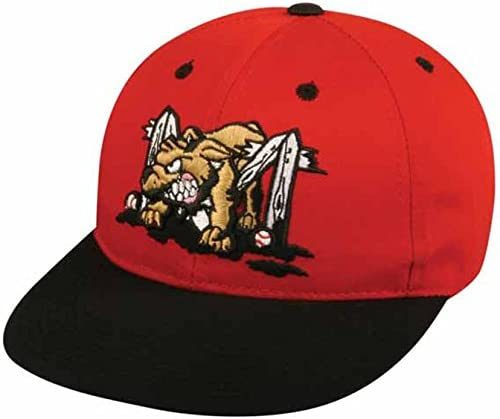 Muck Dogs Minor League Youth Hat