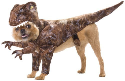 Animal Planet pet20109 Costume de Vélociraptor pour chien, taille M par Californie Costume collections