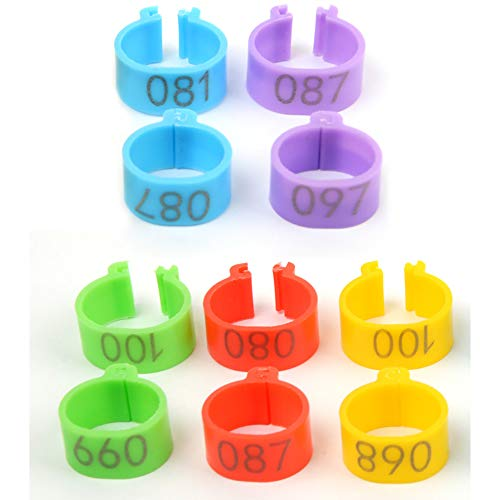 WANXIANG 100 Pcs Chicken Leg Rings 16MM Chicken Identification Leg Bands 5 Colors Clip-on Chicken Ankle Rings Numbered 001-100 Poultry Leg Bands for Chicken/Ducks/Goose/Turkey/Pigeons