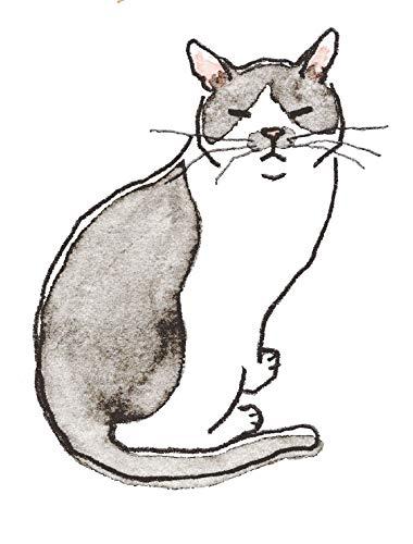 これから猫を飼う人に伝えたい11のこと