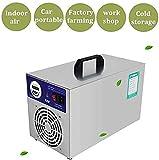 buyaolian Generador de ozono Purificador de Aire Profesional Certificado CE O3 30000 MG/H Purificador de Aire Desodorante y esterilizador Resistente al ozonizador Ideal para el Control de olores