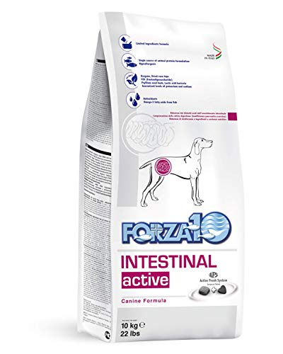 Forza10 Intestinal Active Dry Dog Food, Digestive and Intestinal Support Diet Dry Dog Food for Adult, Medium, Small and Mini Dog Breeds (22 Pounds)