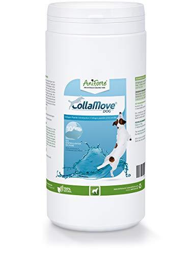 AniForte CollaMove Collagen Joint Powder for chiens 450g - Poudre de pêche de haute qualité, poisson sauvage pêché contrôlé, peptides de collagène pour les articulations, agilité et joie de mouvement