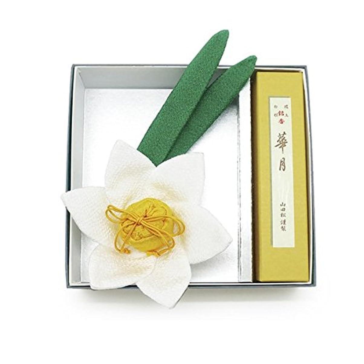 神経精巧なバナー京の香り 水仙セット