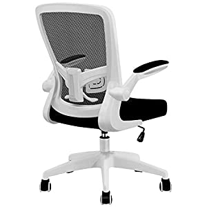 [ Ergonomic Design ] The mesh back of FelixKing's chair has excellent elasticity, completely suitable for the waist and back curve. It provides comfortable support which helps you to maintain a relaxed posture in a long hours of work. It is easier to...